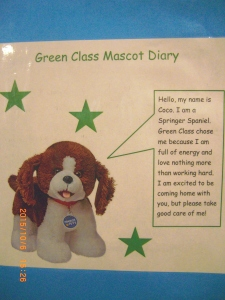 Meet Coco the Springer Spaniel, the new class mascot for Green Class.
