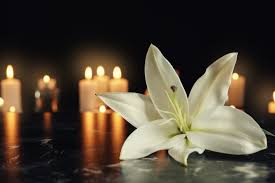 Five considerations for supporting bereaved employees